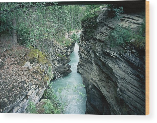 Scenic Wood Print featuring the photograph Fast Moving Water by Dick Willis