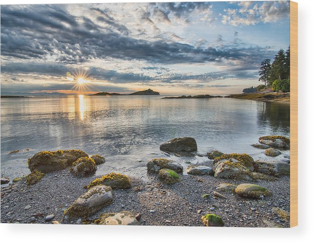 Beautiful Wood Print featuring the photograph Galiano Sun Star by James Wheeler
