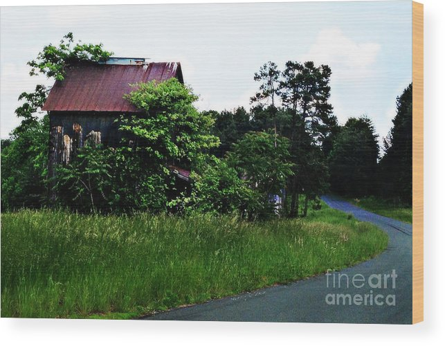 Rustic Wood Print featuring the photograph Gone But Not Forgotten by Nancy Stein