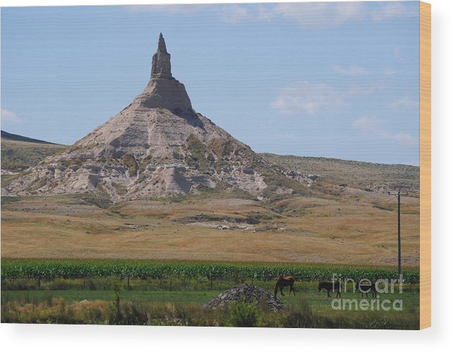 Wood Print featuring the photograph Chimney Rock by Brandon Finister