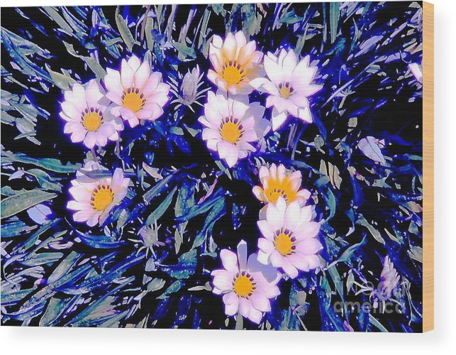 Flowers Wood Print featuring the photograph Love Me Not by Jesse Ciazza