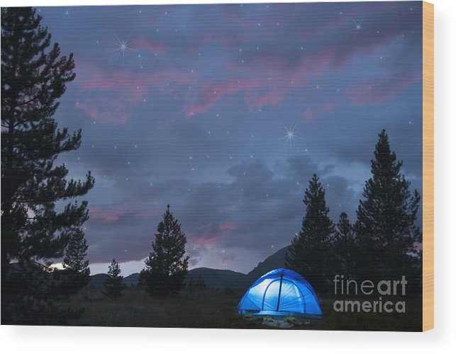 Beauty In Nature Wood Print featuring the photograph Paint The Sky With Stars by Juli Scalzi