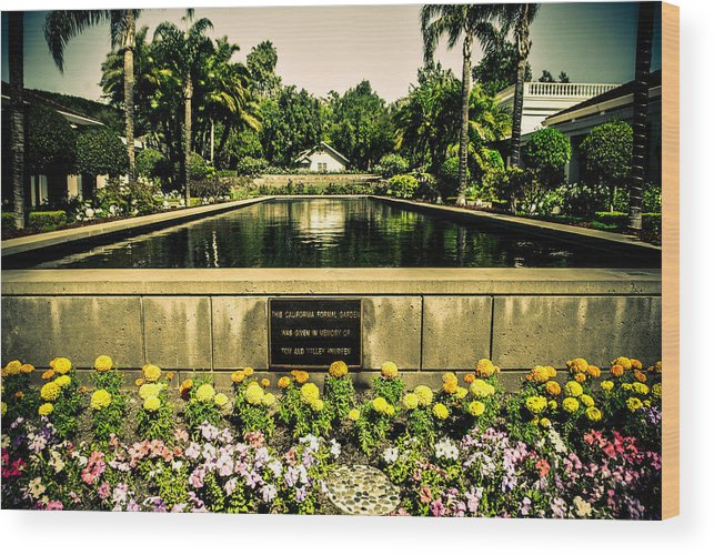 Pool Wood Print featuring the photograph Pool At Nixon Library by AR Harrington Photography