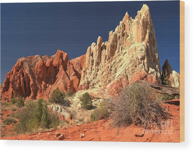 Cottonwood Road Wood Print featuring the photograph Red White And Blue Sky by Adam Jewell