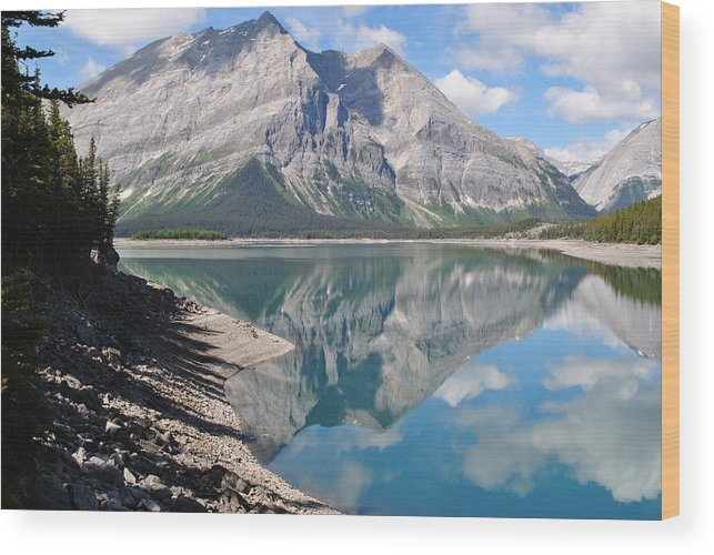 Reflection Wood Print featuring the photograph Reflections In Time by Jim Hogg