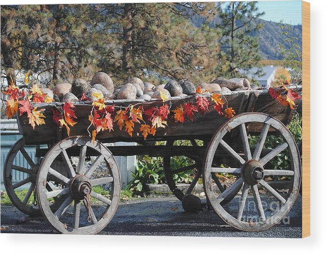 Wood Print featuring the photograph Rock Wagon by Brandon Finister