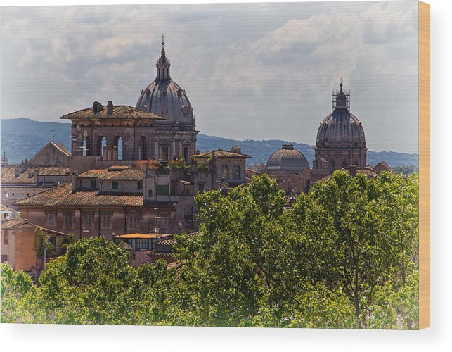 Rome Wood Print featuring the photograph Rooftops Of Rome by David Pringle