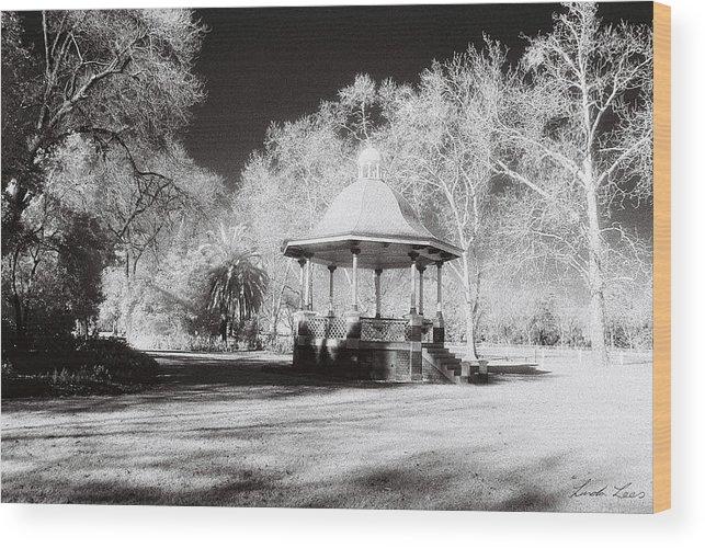Infrared Wood Print featuring the photograph Rotunda Benalla Botanical Gardens by Linda Lees