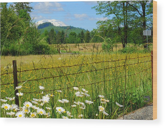 Landscape Wood Print featuring the photograph Rural Springtime by Mamie Gunning