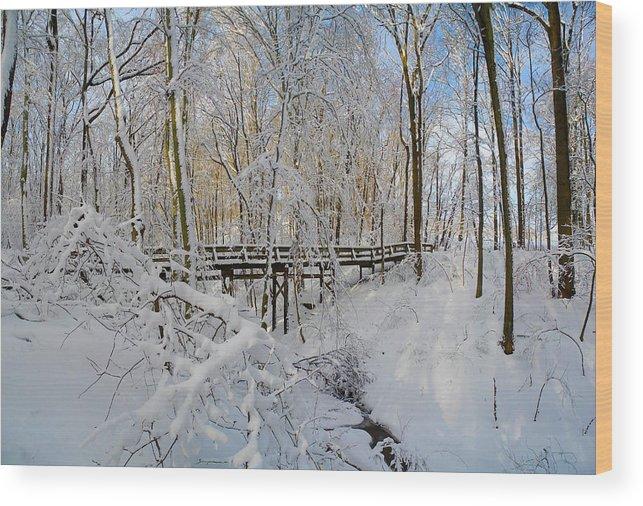 Snow Bridge Wood Print featuring the photograph Snow Bridge by Raymond Salani III