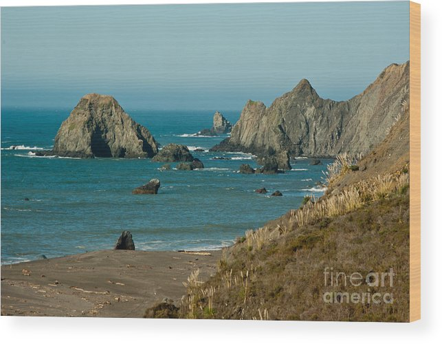 Sonoma County Wood Print featuring the photograph Sonoma Coast 1.7064 by Stephen Parker