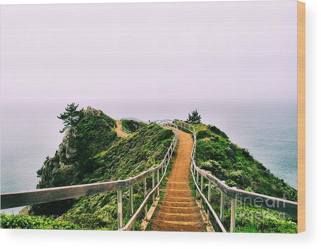 Stinson Beach Wood Print featuring the photograph Stairway To Stinson by Nancy Chambers