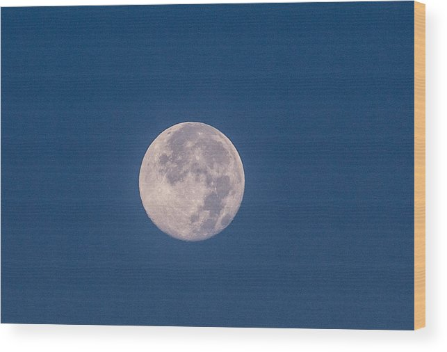 Super Moon Wood Print featuring the photograph Super Moon July 2014 by Renny Spencer