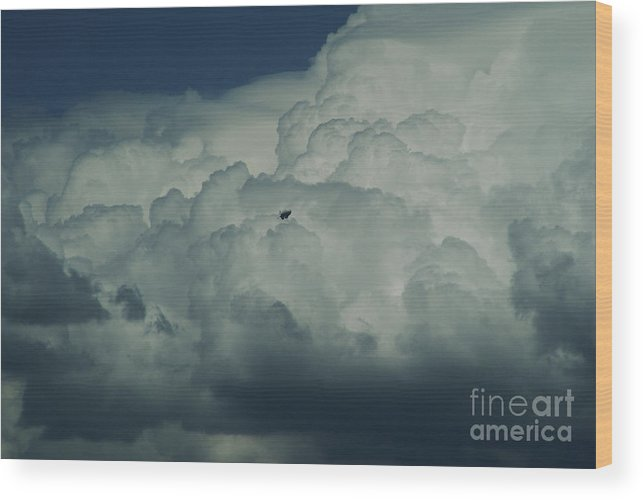 Cloud Wood Print featuring the photograph The Great Escape by Linda Shafer
