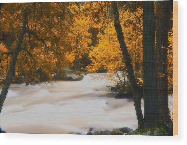 Infrared Wood Print featuring the photograph The Mist by Jean-Pierre Mouzon