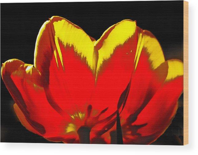 Tulip Wood Print featuring the digital art Tulip Underside by Georgianne Giese