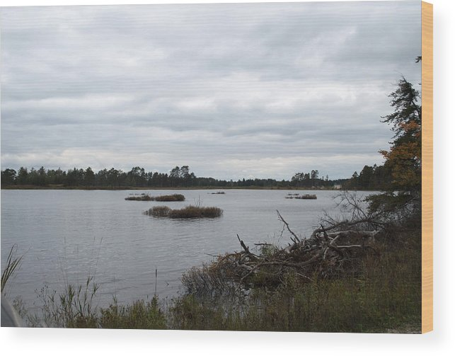 Upper Peninsula Wood Print featuring the photograph Wilderness by Linda Kerkau