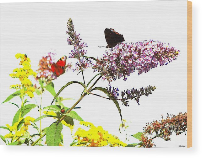 Butterfly Wood Print featuring the photograph Butterfly Bush by Ulrich Lange