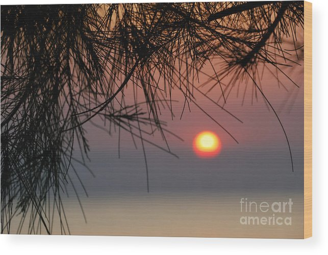 Kendwa Wood Print featuring the photograph Sunset In Zanzibar by Alan Clifford