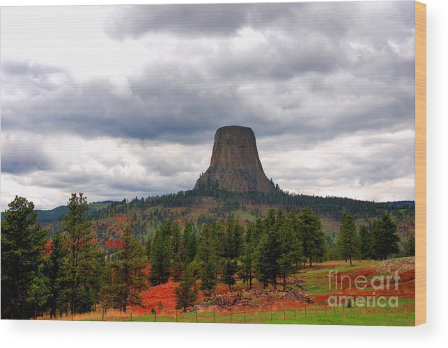 Landmark Wood Print featuring the photograph The Devils-tower Wy by Susanne Van Hulst