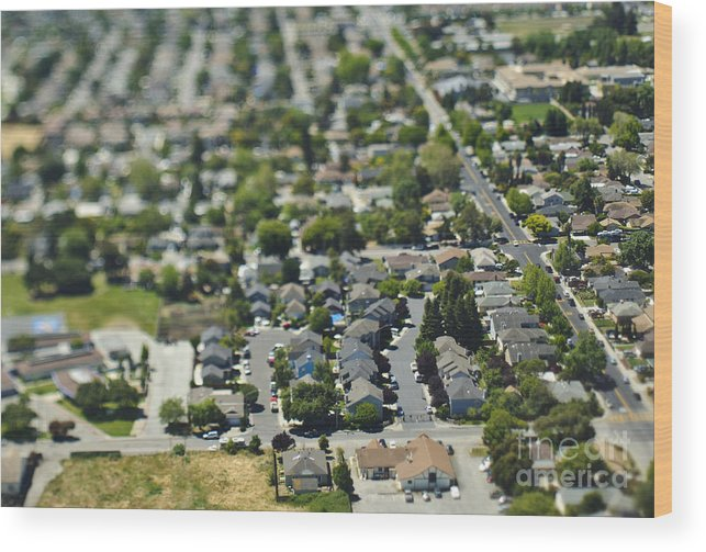aerial wood print featuring the photograph suburban community by eddy joaquim