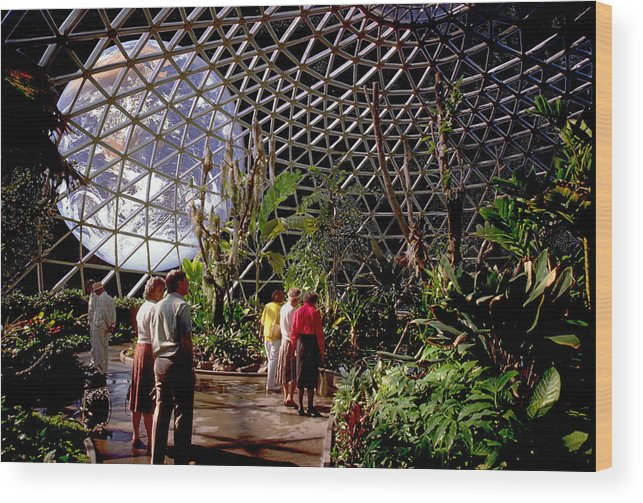 Bio Dome Wood Print featuring the photograph Bio Dome by Larry Mulvehill
