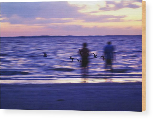Landscape Wood Print featuring the photograph Birds Abstract View by Florene Welebny