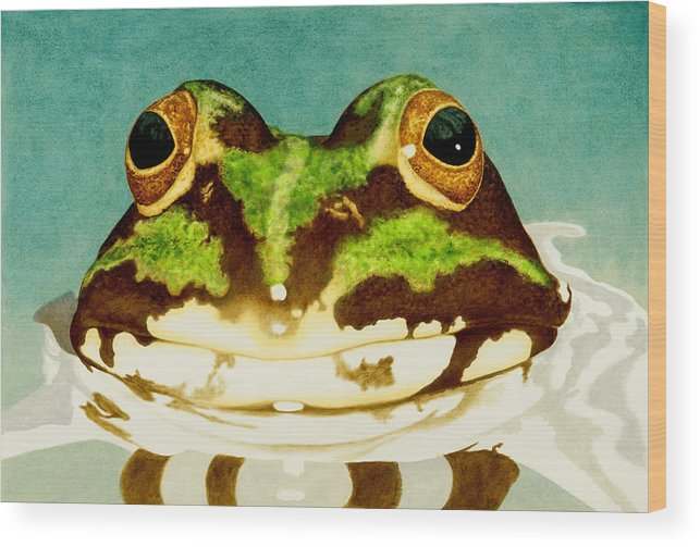 Frog Wood Print featuring the painting Blind Date by Norm Holmberg
