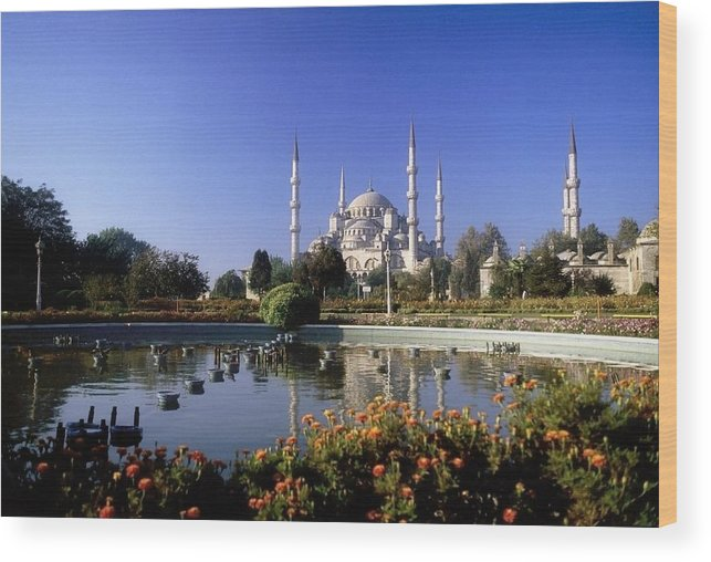 Blooming Wood Print featuring the photograph Blue Mosque, Sultanahmet, Istanbul by The Irish Image Collection