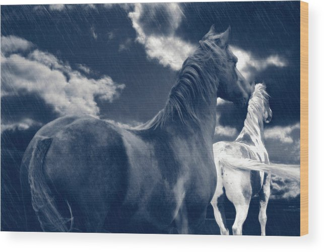 Rain Wood Print featuring the photograph Come Rain Or Shine by Maggie Dee