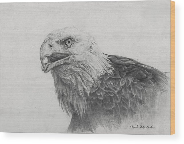 Eagle Wood Print featuring the drawing Eagles Quest by Frank Zampardi