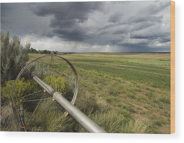 Nobody Wood Print featuring the photograph Farm Irrigation Sprinklers Next by Bill Hatcher