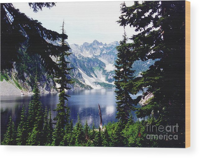 Trees Wood Print featuring the photograph Field Goal Attempt by Bruce Borthwick