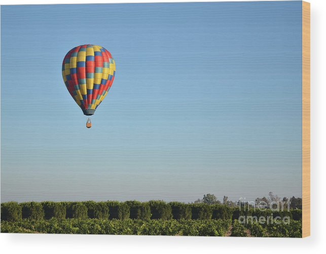 Wood Print featuring the photograph Hot Air Balloon Over Vineyard by Timothy OLeary