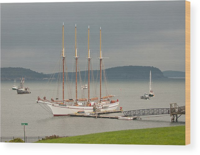 bar Harbor Wood Print featuring the photograph Misty Afternoon by Paul Mangold