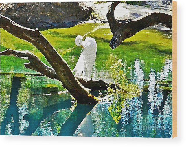 Egret Wood Print featuring the photograph Preening Watercolor by Carol Bradley