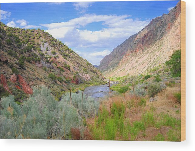 Southwest Wood Print featuring the photograph Rio Grande Colors by Vicki Coover
