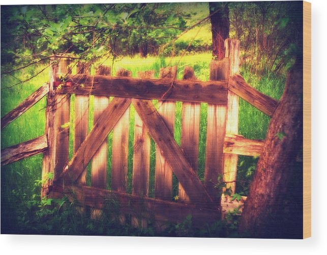 Fence Wood Print featuring the photograph Stable by Rachel Porostosky