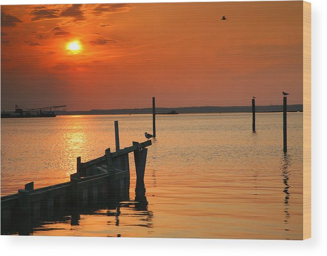 Sun Wood Print featuring the photograph Sunset Bay V by Steven Ainsworth