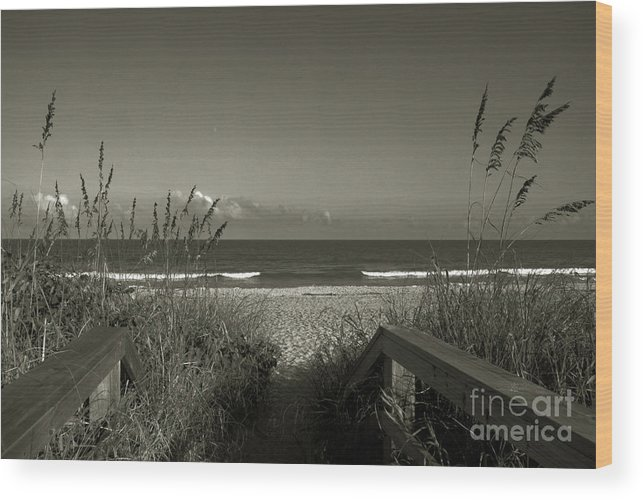 Beach Wood Print featuring the photograph What A Day by Susanne Van Hulst