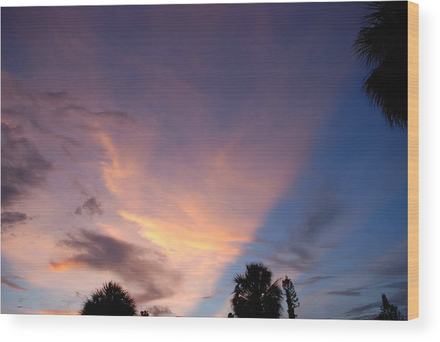 Sunset Wood Print featuring the photograph Sunset At Pine Tree by Rob Hans