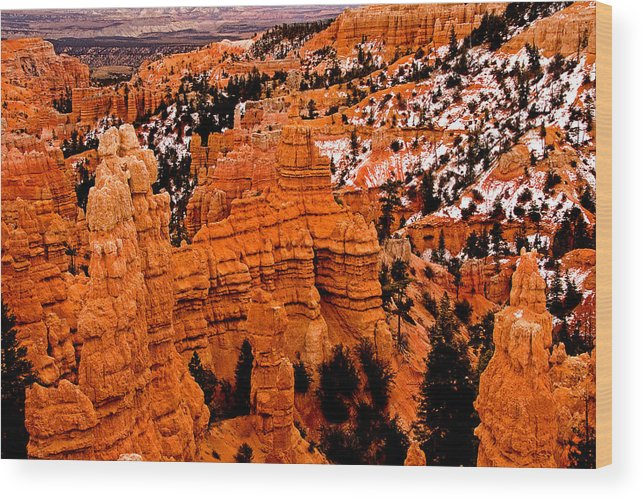 Landscape Wood Print featuring the photograph Bryce Canyon N.p. by Larry Gohl