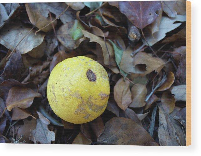 Liguria Wood Print featuring the photograph 2017 Limone by Roberto Ferrero