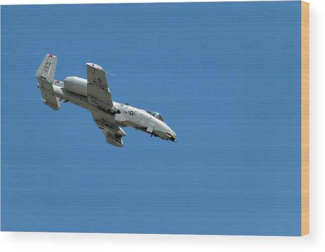 Military Wood Print featuring the photograph A-10 Warthog Diving by Murray Bloom