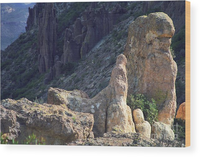 Rock Formations Wood Print featuring the photograph A Hard Ride by Kathy McClure