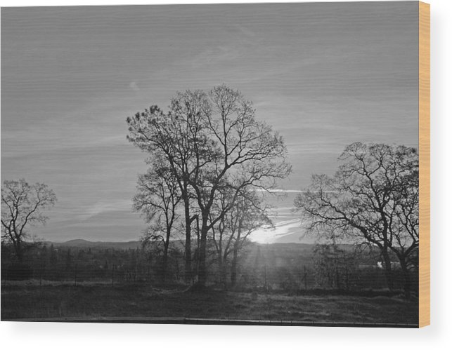 Landscape Wood Print featuring the photograph A. M. by M Ryan