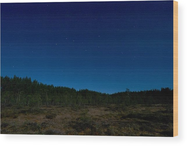 Lehtokukka Wood Print featuring the photograph Autumn Stars by Jouko Lehto
