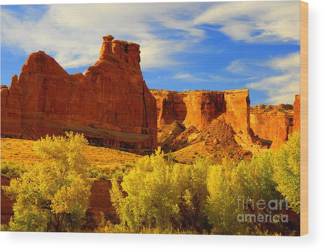 Arches Wood Print featuring the photograph Autumn Vista by Dennis Hammer