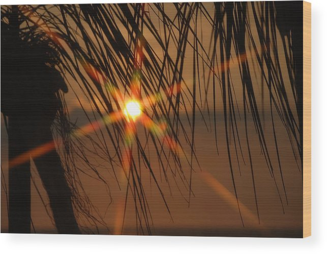 Landscape Wood Print featuring the photograph Beach Sunset by Lisa Gabrius