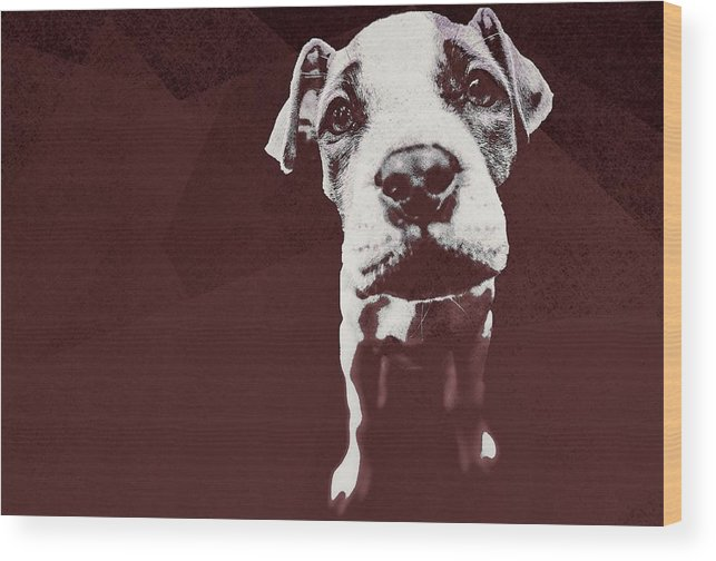 Dog Wood Print featuring the digital art Bestie by Immaculate World